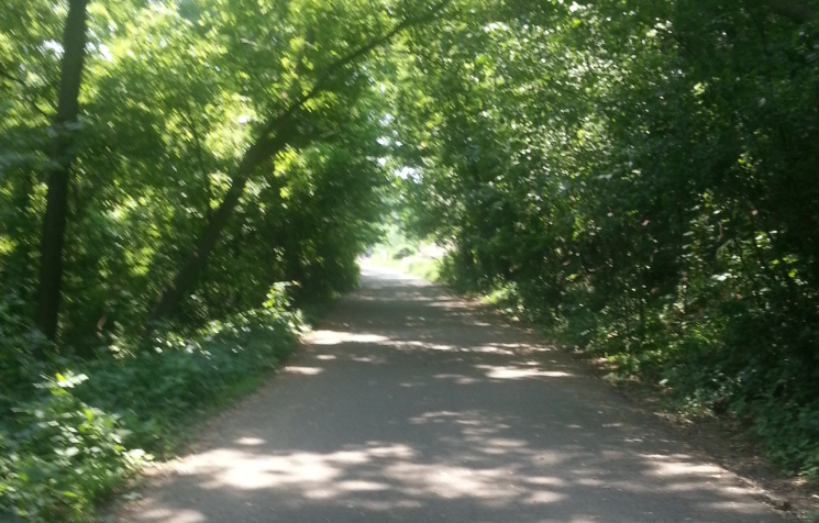 Fort Snelling Trails