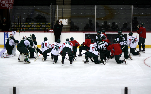 Wild 2013 Training Camp