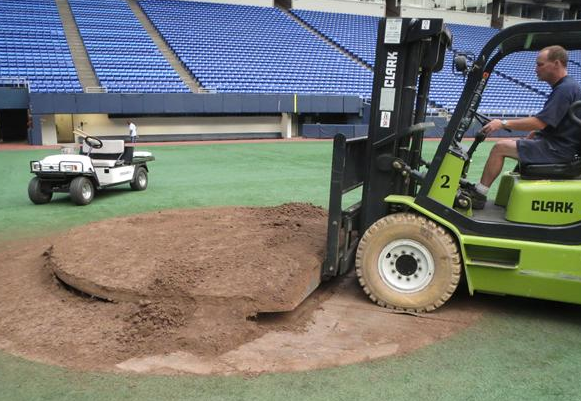 Twins Mound For Sale - Metrodome - Auction
