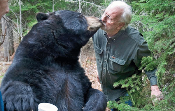 Lynn Rogers - Bears - Man kissing a bear