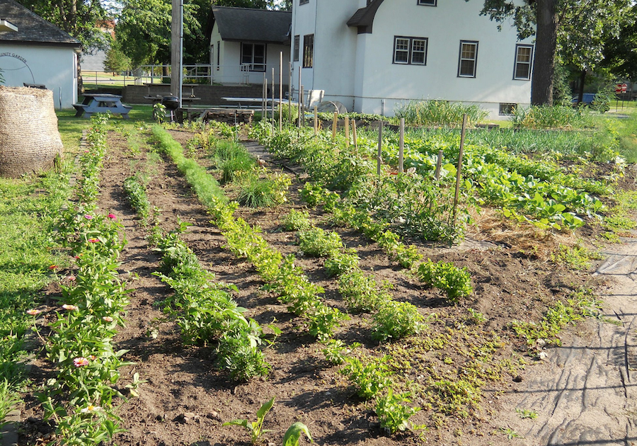 2014 - st cloud state wins best community garden