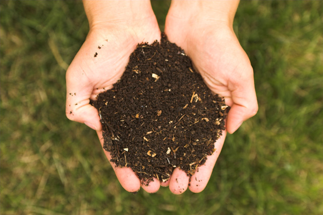 Real_Compost