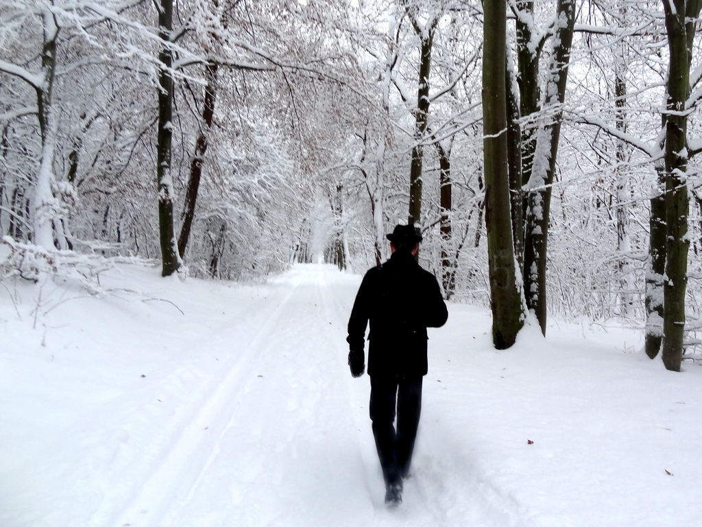 running in the snow 2