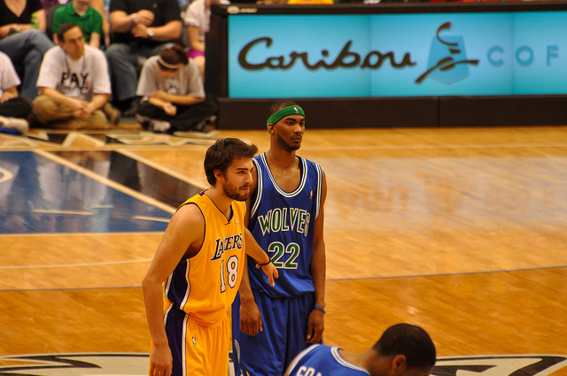Corey Brewer Trade